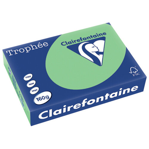 Trophee Card A4 160gm Natural Green Pack of 250 1120C
