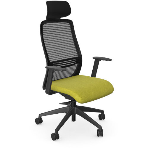 NV Posture Office Chair with Contoured Mesh Back and Adjustable Lumbar Support &Headrest Black Frame Green Seat