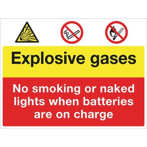 Sign Explosive Gases 400x300 Vinyl