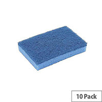 Sponge Scourer High Quality Non Scratch Blue Pack 10
