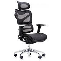 Dorsum Executive Ergonomic Mesh Office Chair with Headrest Black