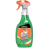 Mr Muscle Window and Glass Cleaner 750ml 308957