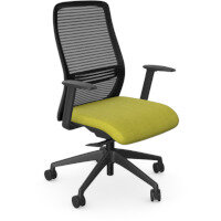 NV Posture Office Chair with Contoured Mesh Back and Adjustable Lumbar Support Black Frame Green Seat