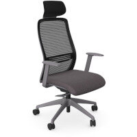NV Posture Office Chair with Contoured Mesh Back and Adjustable Lumbar Support & Headrest Grey Frame Grey Seat
