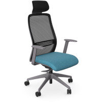 NV Posture Office Chair with Contoured Mesh Back and Adjustable Lumbar Support & Headrest Grey Frame Light Blue Seat