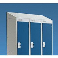 Coloured Door Locker with Sloping Top 278x300 Light Grey Door