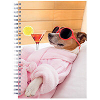 Cats and Dogs Twinwire Notepads A5 Pack of 5 302367