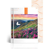 Cocoon Silk 60% Recycled Fsc4 460x320 350gsm Untrimmed Commercial Printing Paper Ream of 200