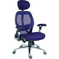 Cobham Contemporary Mesh Back Executive Office Chair Blue
